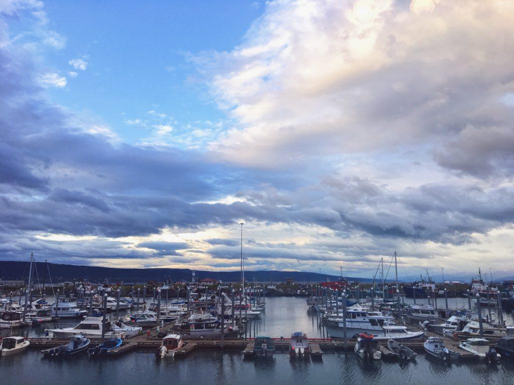 Porto di Homer - Alaska
