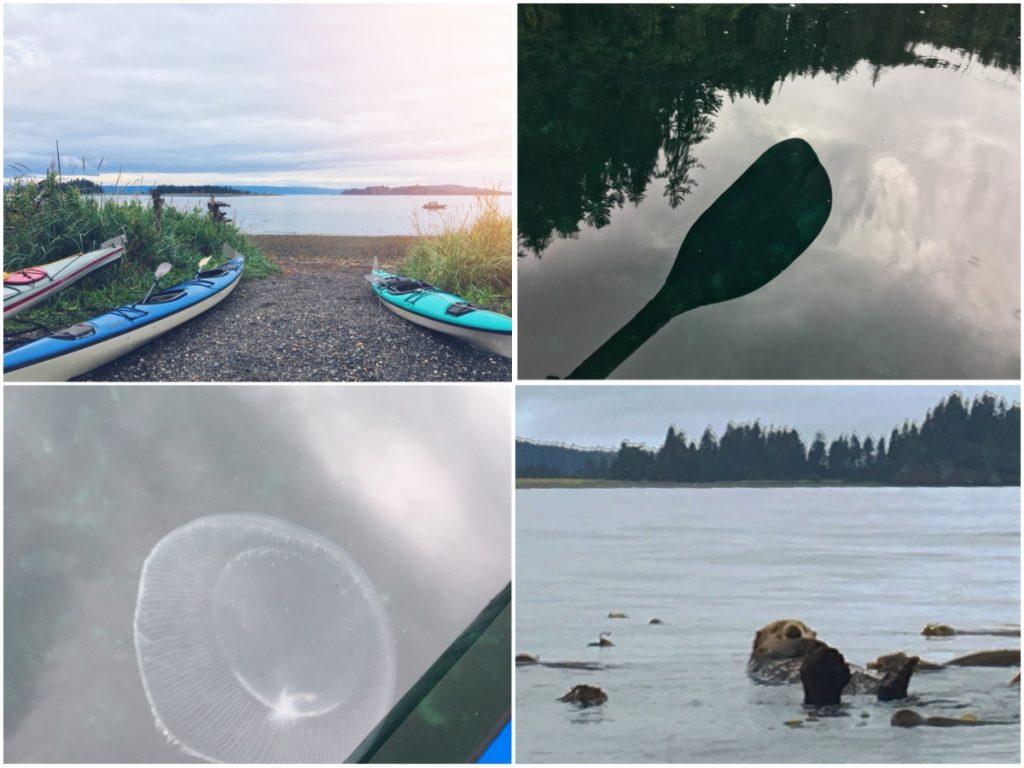 Kayak in Alaska - Itinerario di 10 giorni in Alaska - penisola del Kenai