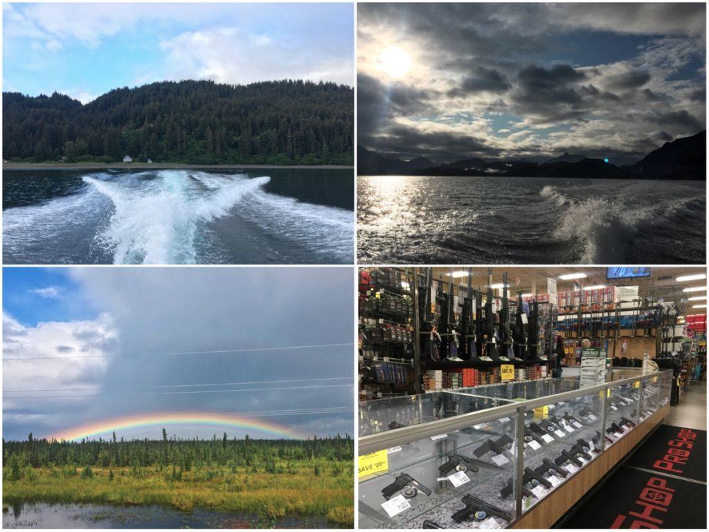 Le armi al supermercato- Itinerario di 10 giorni in Alaska - penisola del Kenai