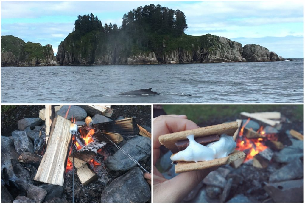 Sciogliere i marshmallow sul fuoco - Itinerario di 10 giorni in Alaska - penisola del Kenai