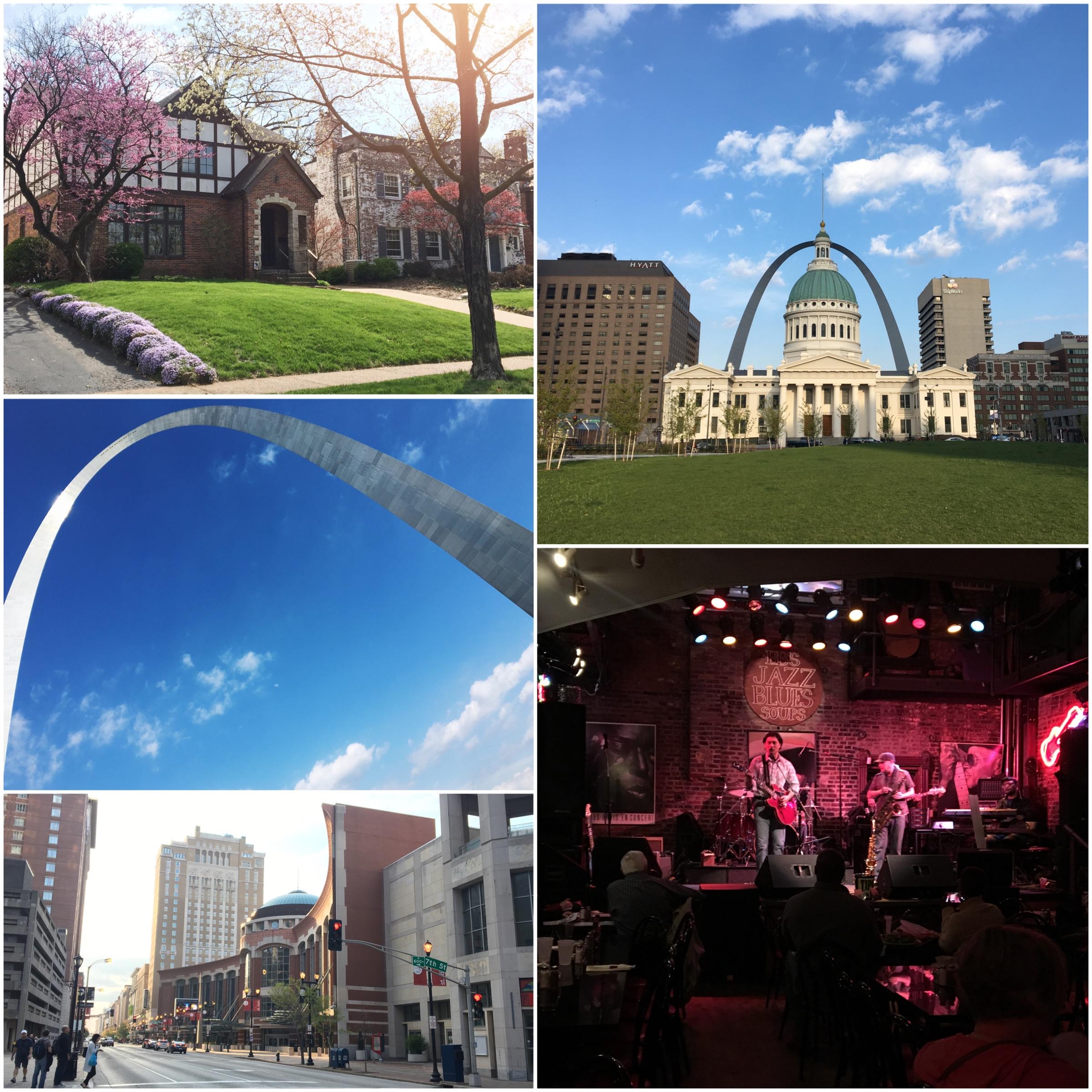 Visita di una giornata a St Louis