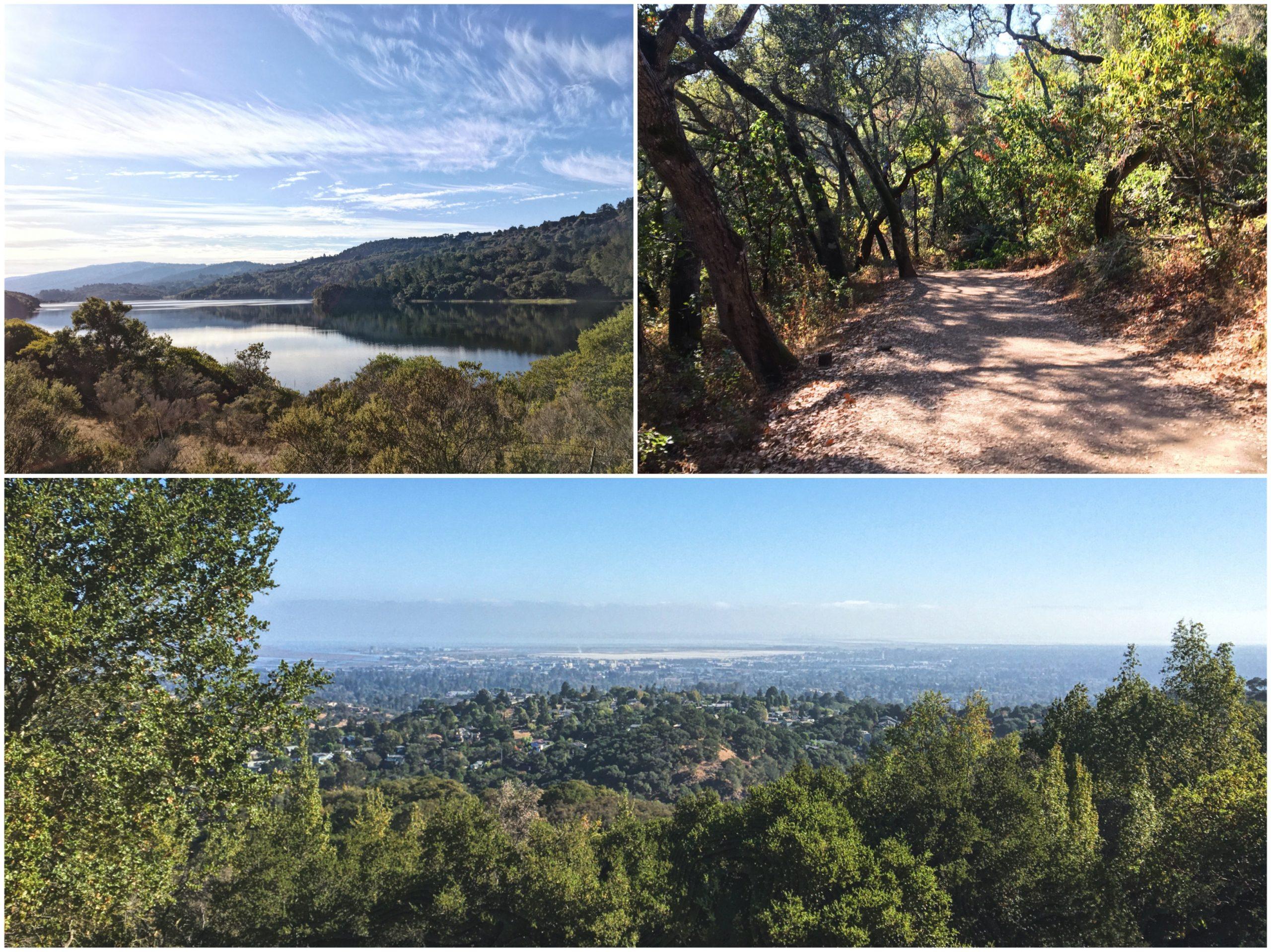 Hiking nella Bay Area - San Francisco
